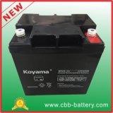 bateria acidificada ao chumbo do AGM de 12V 24ah para o protetor de UPS/Surge