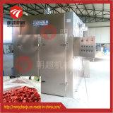 Fábrica excelente de la secadora del alimento del horno del aire caliente de China