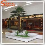 De Kunstmatige Palm van Wholesales van Guangzhou
