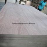[18مّ] [بنسل سدر] خشب رقائقيّ يستعمل لأنّ أثاث لازم إلى دبي [أو]