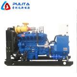 Motore elettronico del gas naturale da vendere il generatore del biogas 10kw 20kw 50kw 100kw 200kw 500kw