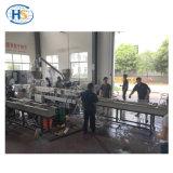 ABS/ 6-66 de nylon de doble husillo de la máquina para el material de ingeniería