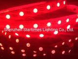 高い明るさRGBW/Rgbww LEDの適用範囲が広い滑走路端燈LEDの照明クリスマスの装飾のクリスマスの照明5年の保証LEDの