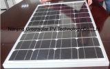 Monokristalliner Sonnenkollektor 100W für HauptSonnensystem