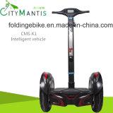 Электрический 2 колес самокат самоката/самоката баланса баланса Scooter/E-Bike/Self/