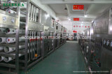 Trattamento delle acque della macchina/RO del sistema/RO del filtro da acqua del RO (1000L/H)