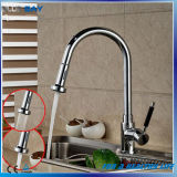 La plaque sanitaire de chrome d'articles retirent le mélangeur de bassin de cuisine