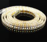 Warmwhite 백색 색깔 변하기 쉬워 120V LED 지구 빛