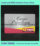Drucken der Farben-vier mit UVstandardkarte für Geschäft