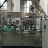 Línea automática de la máquina de rellenar del agua mineral de la botella 6L