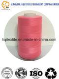 Filato cucirino 75D/2 del rayon del poliestere del ricamo della tessile ecologica del tessuto