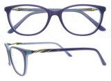 형식 안경알 프레임 새로운 아세테이트 광학 프레임 도매 주식 Eyewear