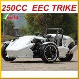 承認されるTrikeのロードスターのZtr 250cc EEC
