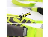 Pacchetto del sacchetto della cinghia della borsa della vita della Fanny di ginnastica di sport per le donne (BF161031)