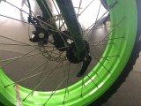 20 pulgadas de ancho de neumático de 8 grados de asistencia eléctrica de bicicleta con antirrojo de aleación de marco multifuncional de visualización Shimano Deraileur Rst de freno de disco de horquilla En15194