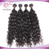 Trama 100% natural do cabelo da onda do cabelo malaio de Remy do Virgin