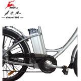 Cadre en alliage d'aluminium 250W E-Bicycle avec certificat CE (JSL038XD-1)