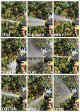 China Expandable Garden Hose + 9 Function Spray Buse