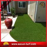 عرس زخرفة عشب اصطناعيّة يرتّب عشب اصطناعيّة