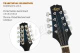 Corps stratifié par couleur de marque d'Aiersi une mandoline électrique Maa001e de type