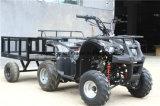 Mini jeep del almacenaje grande negro, granja ATV