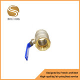 Globo de bola de latón de la válvula Dn4-DN50