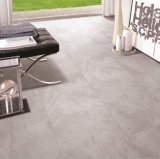 Color gris mate Baldosa Porcelana (600x900mm)