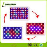 300W todo o espectro da intensidade de luz para o crescimento de plantas de LED e Veg Bloom