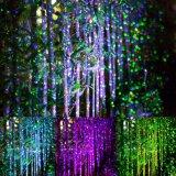 赤いですか緑星夜レーザーのシャワーのクリスマスの照明か青