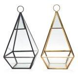 De binnen en OpenluchtBol die van het Glas Terrarium Ornaments&#160 hangen; Ontwerp