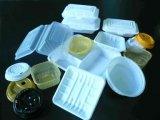 Envase para llevar ambiental disponible biodegradable plástico del rectángulo de almuerzo del envase de alimento