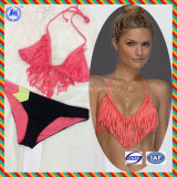 Таможня продает Swimwear оптом Бикини Анти--UV купального костюма повелительницы Swimsuit сексуальный