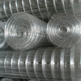 El item popular galvanizó el acoplamiento de alambre soldado con alta calidad