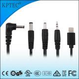 작은 가정용품 제품을%s 가진 AC 접합기 25W/12V/2A 표준 플러그