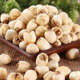El semen chino Nelumbinis, chino semilla de Lotus Sin Core