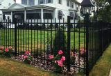 Klassischer schwarzes Puder-überzogener Garten, der mit Qualität ficht