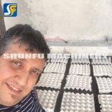 Automatisches aufbereitetes Papiermassen-Ei-Tellersegment-Formteil, das Maschinen-Preise bildet