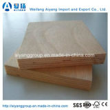 Los álamos de eucalipto/Core/Bintangor Sapeli Okume/Comercial de la madera contrachapada para muebles/Decoración