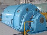Qf 시리즈 증기 터빈 발전기 발전기