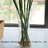 Het in het groot Transparante Hete Verkopen van de Vaas van het Glas
