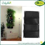 Fiore verticale d'attaccatura nero della piantatrice del giardino della parete che pianta Seeding di giardinaggio del balcone esterno dell'interno della casa del POT dei sacchetti