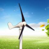 200W petite turbine de vent de 12/24 volt (SHJ-200S)