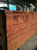 18mm Hardwood Core Film enfrentou madeira compensada para construções