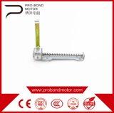 Es habitual exquisito cargas eléctricas Motor dc paso a paso lineal