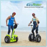 卸し売り新しいモデルの自己のバランスをとる一人乗り二輪馬車の大人旅行電気移動性のスクーター