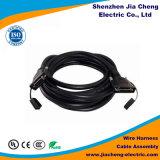 Conjunto de cabo do chicote de fios de fiação das linhas eléctricas
