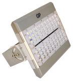 옥외 정연한 정원 점화 (TFH304)를 위한 80W LED 투광램프