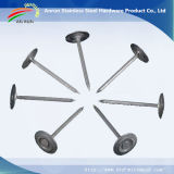 Anel / Twist Shank Umbrella Roofing Nails with Good Galvanized