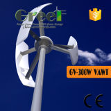 turbine de vent verticale d'axe de 300W Vawt pour la maison