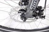 Bike 26 ' классицистический Stepthrough электрический для повелительницы Jb-Tdf01z